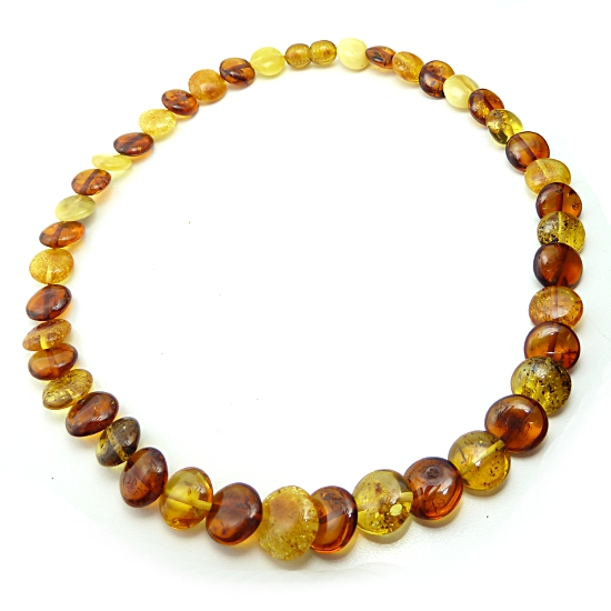 Baltic Amber Multicolor Calibrated Disc Necklace
